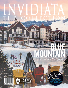 The Invidiata Magazine – Winter 2015/16